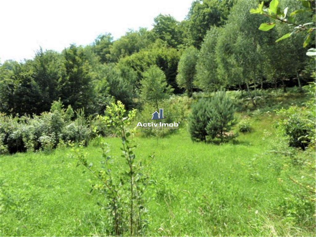 Casa constructie noua 30 ari teren 15 km de Baia Mare