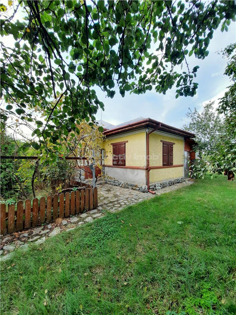 casa Milcovatu, Letca Noua