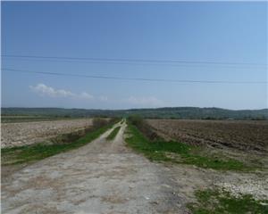 Teren intravilan 2.8 ha spre Somcuta Mare, 3.5 euro mp
